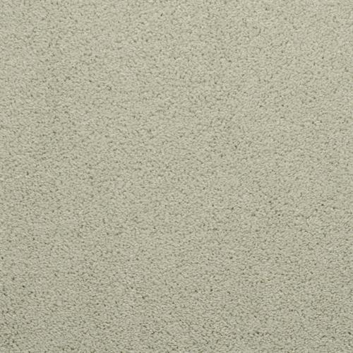 Dixie Home Broadloom Carpet Caress