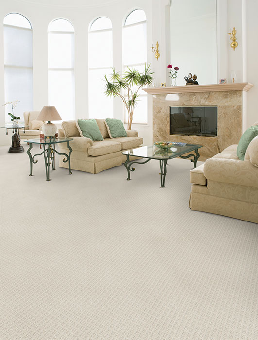 Dixie Home Broadloom Carpet Traditions